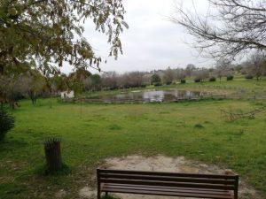 Parques Mairena del Aljarafe